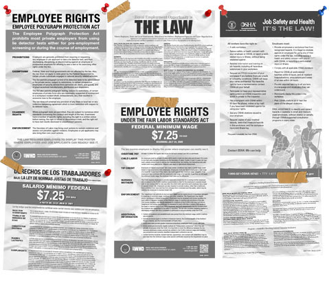 government supplied labor law posters